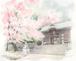 2017年6月1日 「桜 箭幹(やがら)八幡宮3」