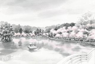 2016年5月6日 「桜 薬師池公園」